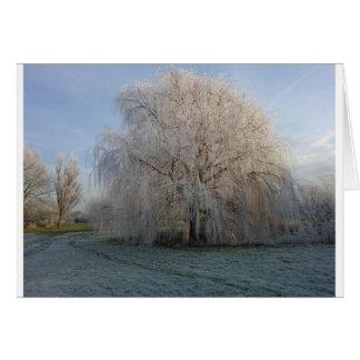 Winter Tree Card