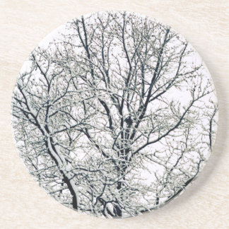 Winter Tree Coaster