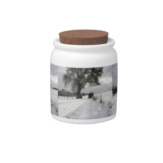 Winter Tree Country Road + Snow Candy Jar