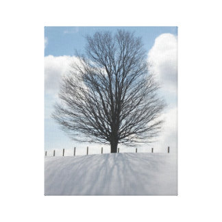 Winter Tree in Michigan Photo Canvas Art Print
