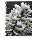 Winter Tree Notebook