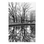Winter Tree Reflection in Central Park Photo Print