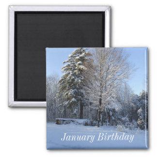 Winter Tree Scene-January Birthday Magnet