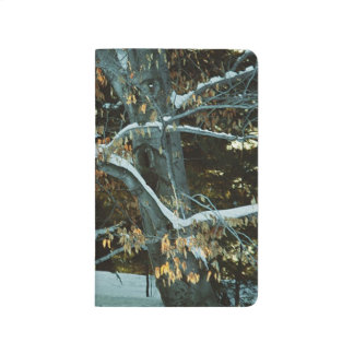 Winter Tree Snow Covered Branches Seasonal Scenic Journal