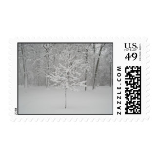 Winter Tree Stamps