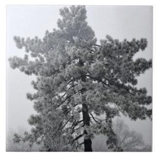Winter tree tiles