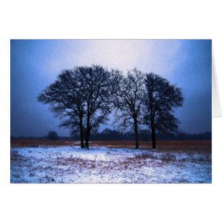 Winter Trees 1 Card