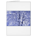 Winter Trees 1 Cards