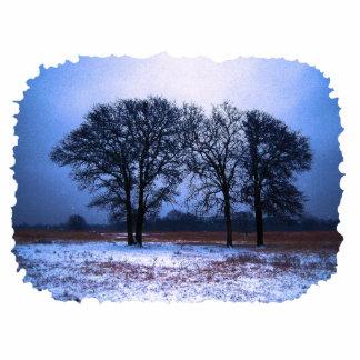Winter Trees 1 Photo Sculpture