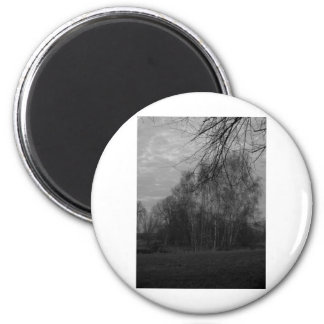 Winter Trees 2 Inch Round Magnet