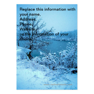 Winter Trees and Lake Large Business Cards (Pack Of 100)