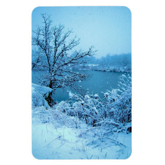 Winter Trees and Lake Rectangle Magnets