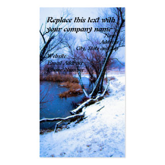 Winter Trees and Pond Double-Sided Standard Business Cards (Pack Of 100)