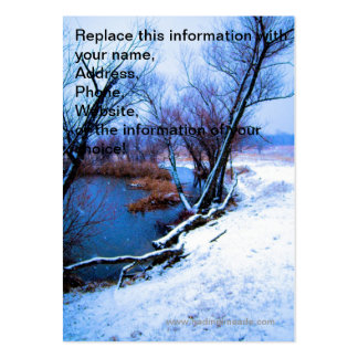 Winter Trees and Pond Large Business Cards (Pack Of 100)