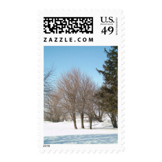 Winter Trees and Shrubs in Iowa Stamps