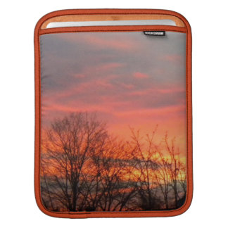 Winter Trees At Sunset Rickshaw iPad Sleeve