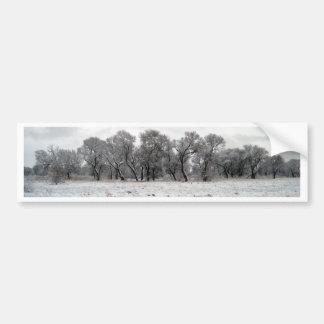Winter Trees Bumper Sticker