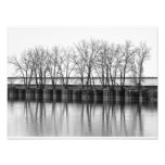 Winter Trees by the Water, B&W Photo Print