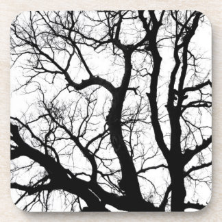 winter trees coaster black and white photography