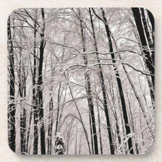 Winter trees coaster