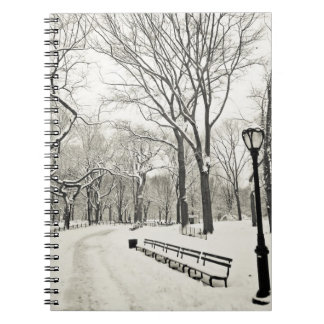 Winter Trees Covered in Snow Notebook