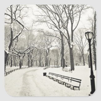 Winter Trees Covered in Snow Square Sticker