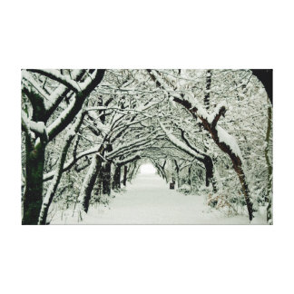 Winter Trees in Heaton Park Canvas Print