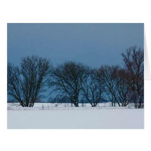 Winter trees in snow card