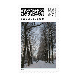 Winter Trees in Snow Nature Postage Stamps