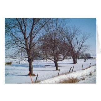 Winter Trees on a Farm in Iowa Card