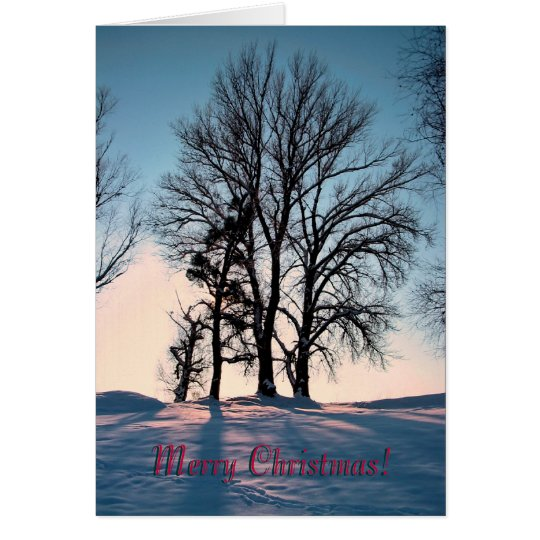 Winter trees on blue sky background card