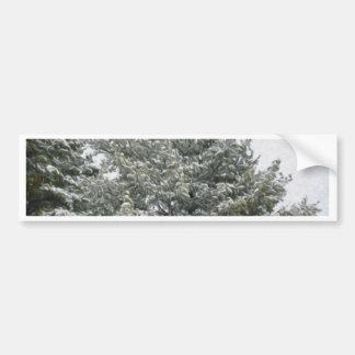 Winter trees on snow 1 bumper sticker