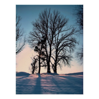 Winter trees on twilight blue sky background poster