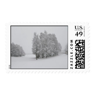 Winter Trees Postage