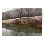Winter Trees Reflected Greeting Card