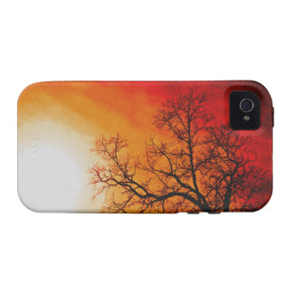 Winter Trees & Setting Sun Branches Nature Scene Case-Mate iPhone 4 Cases
