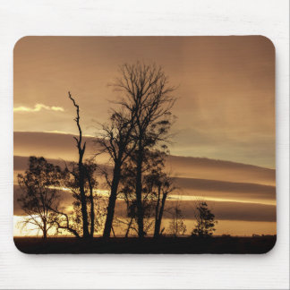Winter trees silhouettes with sunrise mouse pad