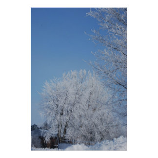 Winter under a blue sky poster