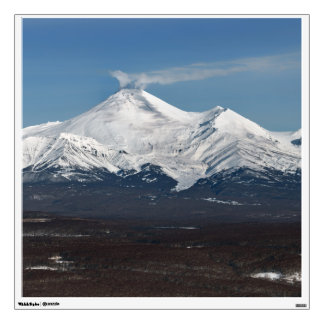 Winter view of Avachinskaya Sopka in Kamchatka Wall Decal