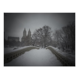 Winter View On Bow Bridge,Central Park, All Sizes Poster