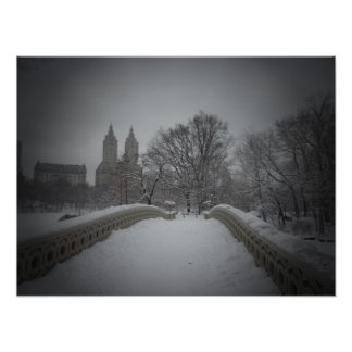 Winter View On Bow Bridge,Central Park, Medium Posters