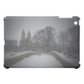 Winter View On Bow Bridge,Central Park, NYC iPad Mini Cases
