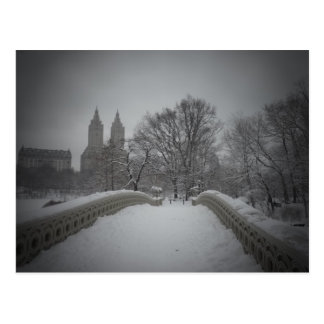 Winter View On Bow Bridge,Central Park, NYC Postcard