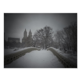 Winter View On Bow Bridge,Central Park, Small Poster
