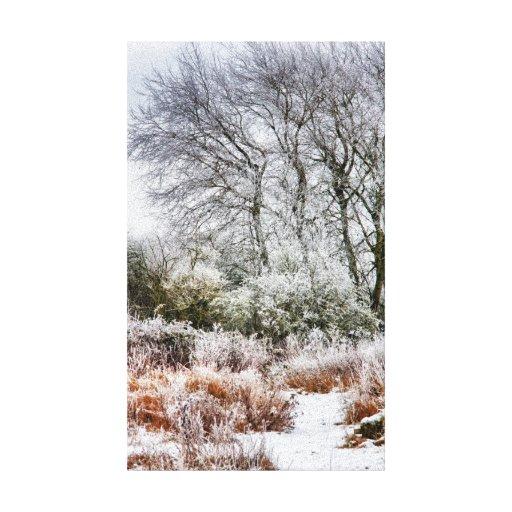 Winter Walk Gallery Wrap Canvas