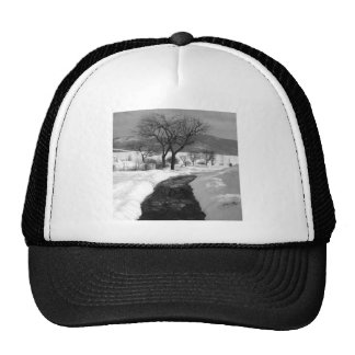 Winter Walkway Trucker Hat