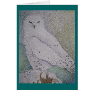 Winter Watch Greeting Cards