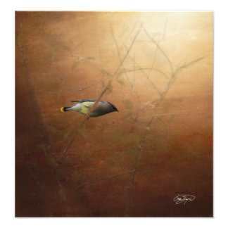 Winter Waxwing Photographic Art - Frame It! Cojinete