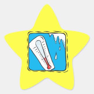 Winter Weather Star Sticker