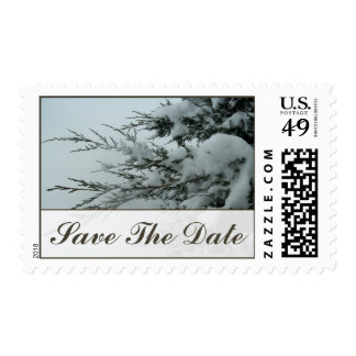 Winter Wedding Evergreen Snow Save The Date Postage Stamps